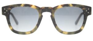 Webster Glasses